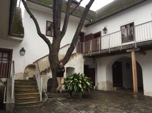 El autor, en la casa donde Beethoven hizo testamento. Heiligenstadt, Viena.