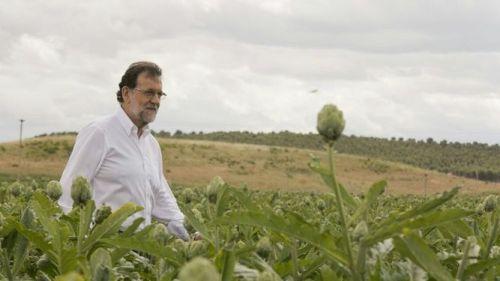 campana-Rajoy-alcachofas-Sanchez-espetos_926319193_107547628_667x375